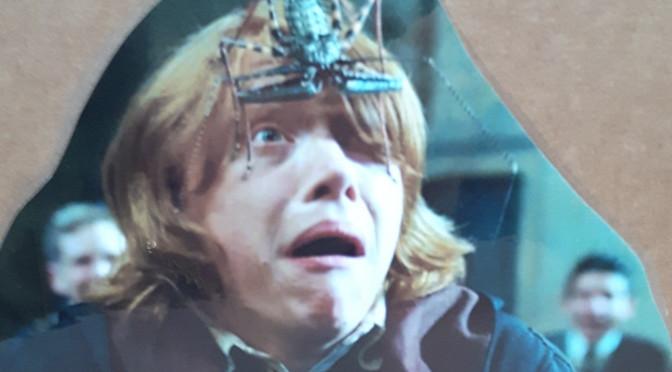Welcome to the jungle: cineturismo con Harry Potter e non solo…